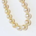 80cm真珠ネックレスとおあつらえお洋服