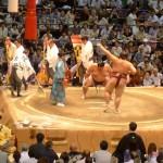 名古屋で19日20日染織逸品展と大相撲見物