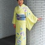 遠峰先生の訪問着と名古屋帯、大島律子先生の紬で撮影