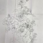 A様の色気のある「酔芙蓉」のお花と候補色