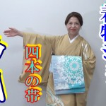 動画:カラーの訪問着と4本の帯 着物ショー