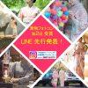 着物フォトコン「 第2回 受賞をLINE先行発表!」  「第3回は動画応募OK!」